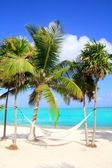 Caribbean sea with swing hammock turquoise beach