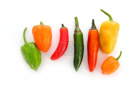 Photo pour Mixte de Piment habanero serrano piments de mexicain - image libre de droit