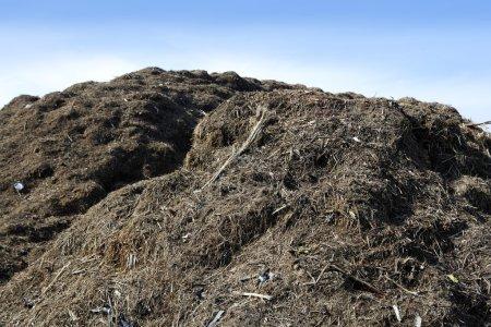 Photo pour Compost grand montagne plein air recyclage écologique industrie environnement engrais - image libre de droit