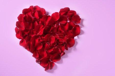 Red petals heart, valentines flowers metaphor