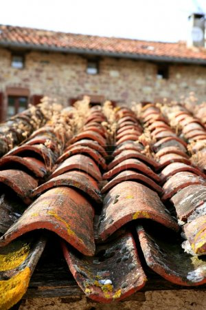 Architectural detail of grunge roof tiles