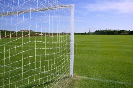 Net soccer goal football green grass field