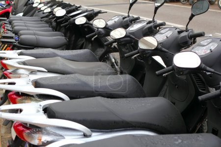 Scooter mototbikes row many in rent store