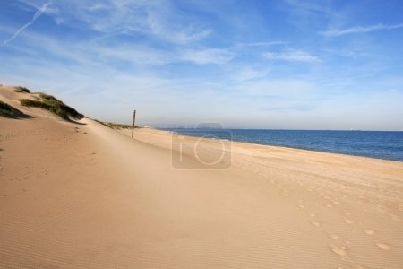 Dune on mediterranean sea coastline