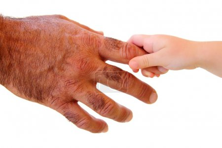 Little kid hand holding hairy father big hand