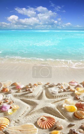 Beach sand starfish print caribbean tropical sea