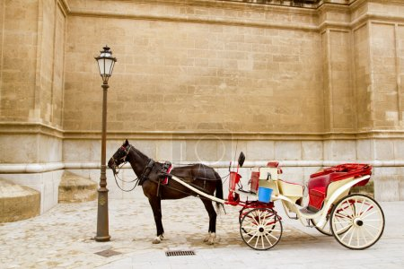 Carriage with horse in Majorca cathedral in Palma