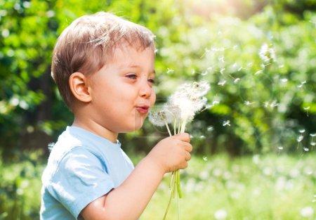 Photo pour Garçon de 2 ans mignon avec pissenlit à l'extérieur à la journée d'été ensoleillée - image libre de droit