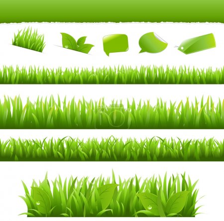 Illustration for Collection Eco Design Elements, Isolated On White Background, Vector Illustration - Royalty Free Image