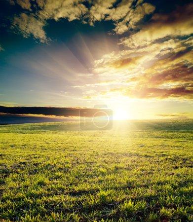 Photo pour Champ d'herbe et ciel nuageux au coucher du soleil - image libre de droit