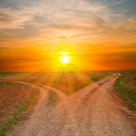 Photo for Two dirty ways under sunrays. sunset time - Royalty Free Image