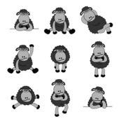 Cute Black Sheep Set