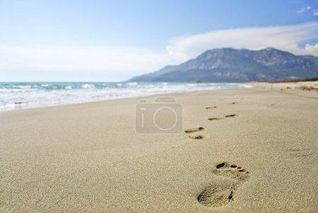Footprints on the beach