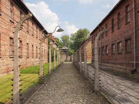 Auschwitz, concentration camp (barbed wire fence)...
