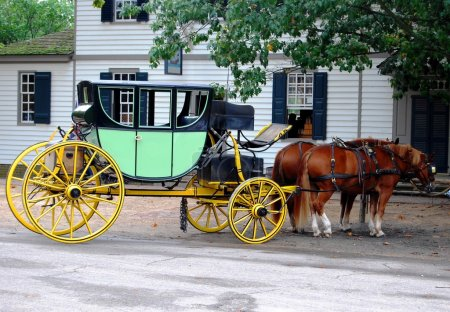 Horse Carriage in Virginia, MD USA