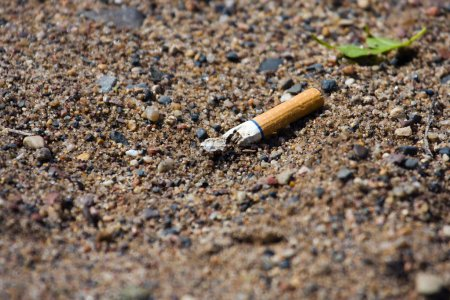 Smoked cigarette on a ground