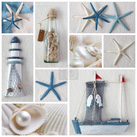 Collage of summer sea stars