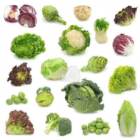 Photo for Cabbage and green vegetable collection isolated on white background - Royalty Free Image
