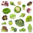 Cabbage and green vegetable collection isolated on...