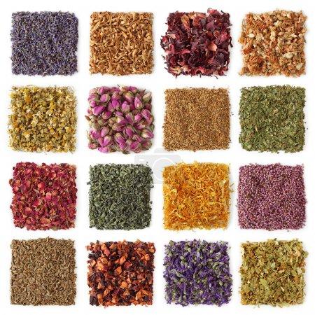 Photo pour Collection de thé sec - image libre de droit