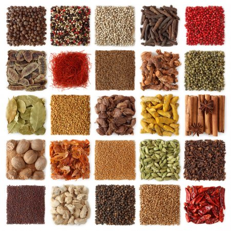 Photo for Indian spices collection isolated on white background - Royalty Free Image