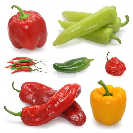 Photo for Paprika pepper collection on white - Royalty Free Image