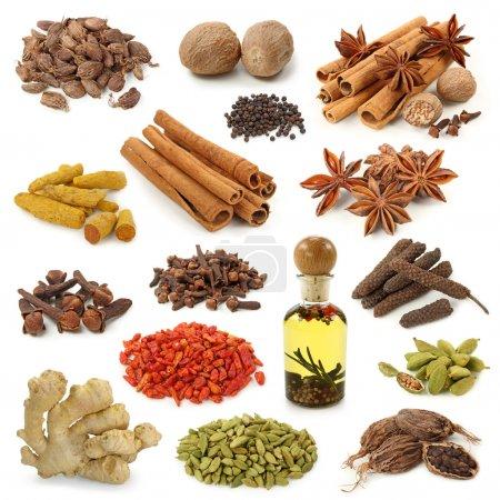Photo pour Collection d'épices isolée sur fond blanc - image libre de droit