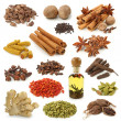 Spice collection isolated on white background...