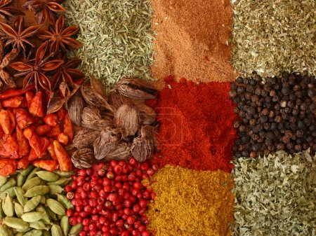 Photo for Various spices close up - Royalty Free Image