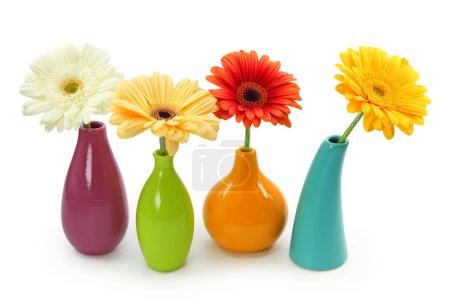 Photo pour Fleurs dans des vases isolés sur fond blanc - image libre de droit