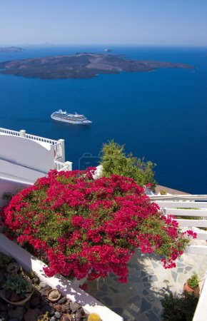 Beautiful bougainvillea on a terrace overlooking Santorini caldera