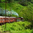 Riding by train the scenic mountain track from Nuw...