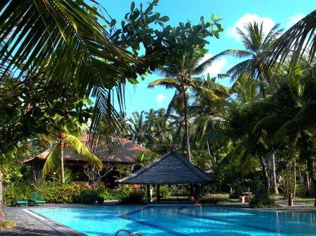 Photo pour Belle piscine à l'océan avec palmiers - image libre de droit