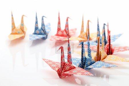 Foto de Pájaros de origami aislados sobre fondo blanco - Imagen libre de derechos