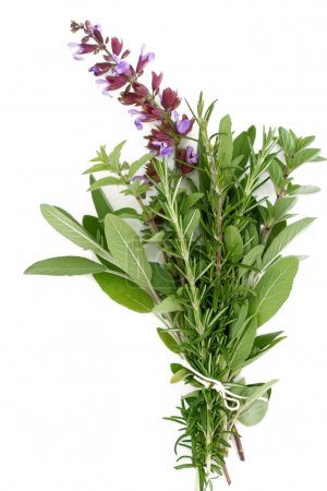 Fresh Herbs - Rosemary, Sage, Oregano