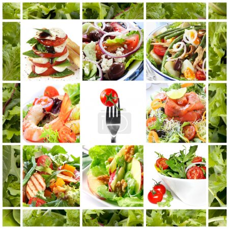 Photo for Collage of healthy salads. Includes caprese, Greek, Waldorf, shrimp, smoked salmon, Nicoise, chicken, and garden salads. - Royalty Free Image