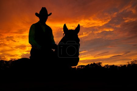 Photo for Silhouette of a horse and a rider in a cowboy hat against late evening storm clouds - Royalty Free Image