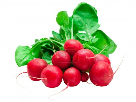 Photo for Radish isolated on white background - Royalty Free Image