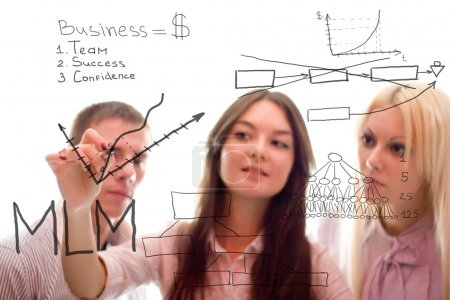 The business team are writing a marketing plan of mlm.