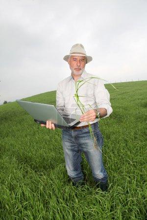 Photo pour Agriculteur examinant la culture avec ordinateur portable - image libre de droit