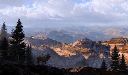 Photo pour Un wapiti silhouette regardant dans les montagnes de distance dans la lumière du soleil du matin . - image libre de droit