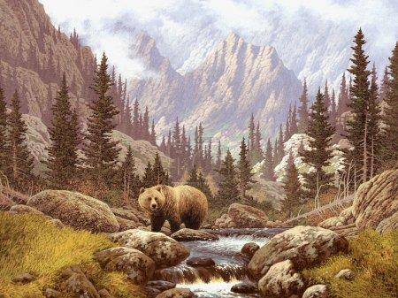 Photo pour Scène paysagère d'un grizzli dans un ruisseau des Rocheuses . - image libre de droit
