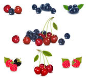 Photo-realistic vector illustration Group of berries