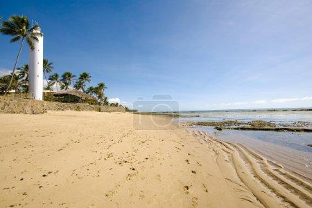 Photo pour Praia do Forte - Bahia - Nord-Est du Brésil  . - image libre de droit
