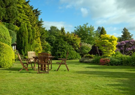 Photo for English garden in June - Royalty Free Image
