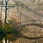 Old bridge in autumn misty park....