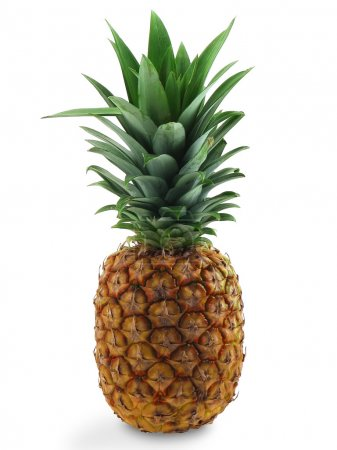 The pineapple.