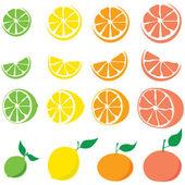 "Постер, картина, фотообои ""Citrus fruit"""