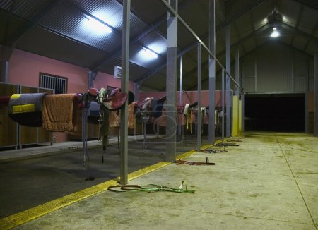 Horse racing stable