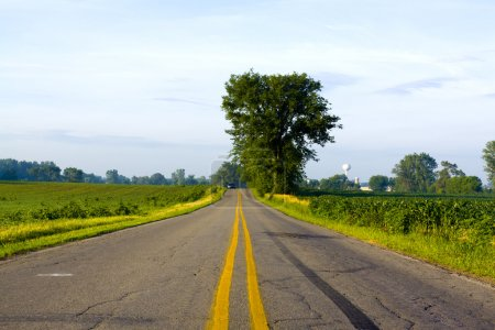 American Road with Sun Light
